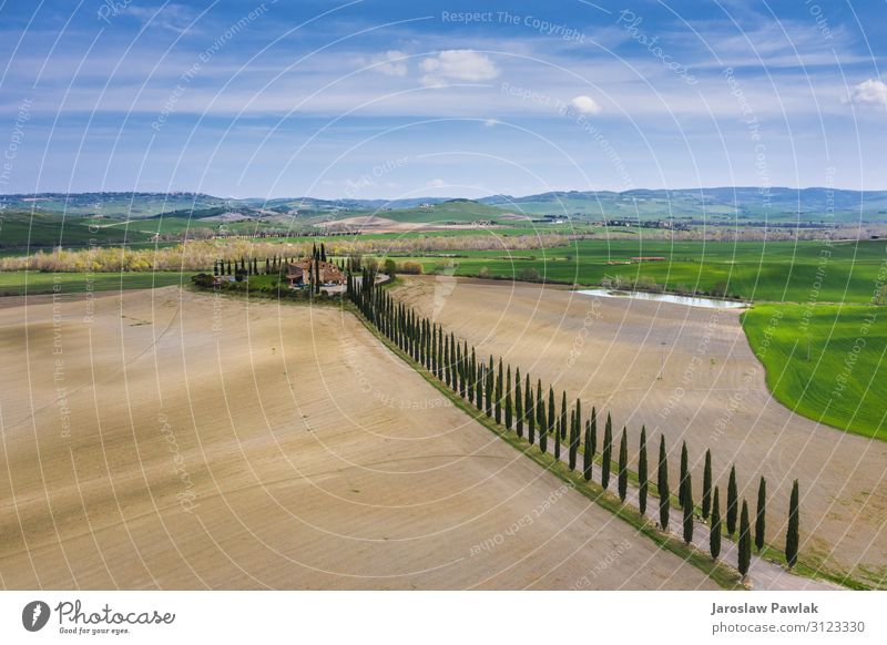 Amazing fields of Tuscany. drone above aerial landscape countryside italy nature europe tuscany farm rural meadow tree cypress outdoor agriculture panoramic