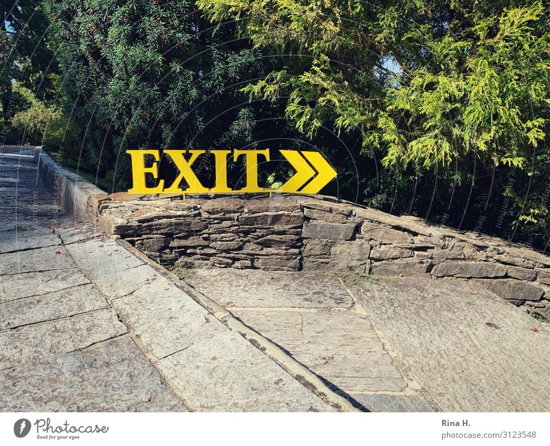exit Nature Tree Metal Sign Characters Signs and labeling Signage Warning sign Yellow Green Road marking exit sign Colour photo Exterior shot Deserted