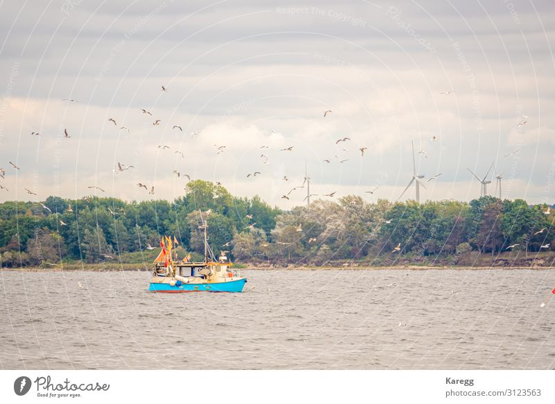far on the sea floats a fishing boat Laboratory Profession Economy Agriculture Forestry Environment Nature Waves Coast Lakeside Fjord North Sea Baltic Sea Ocean