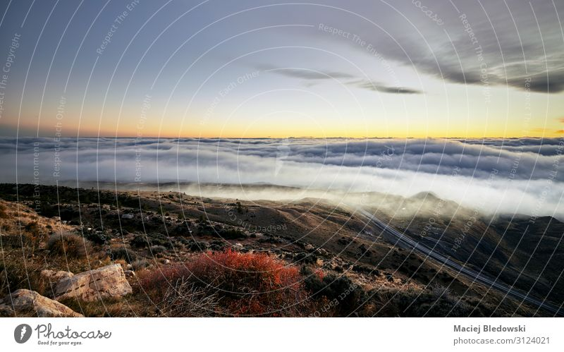 Scenic mountain landscape above the clouds at sunset, USA. Beautiful Vacation & Travel Trip Adventure Far-off places Freedom Camping Summer vacation Sun