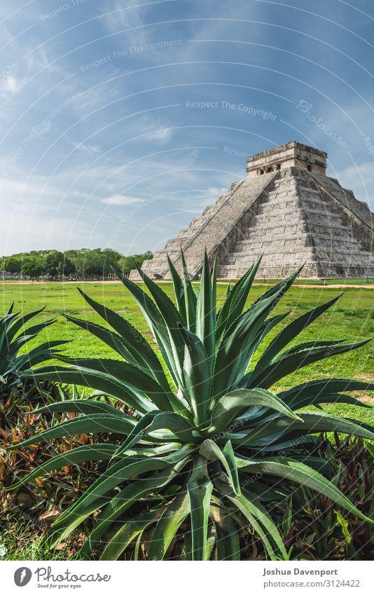 Pyramid of Kukulcan Vacation & Travel Sightseeing Ruin Old Aloe aloe plant Ancient ancient building Central America Chichen Itza landmark Maya mayan