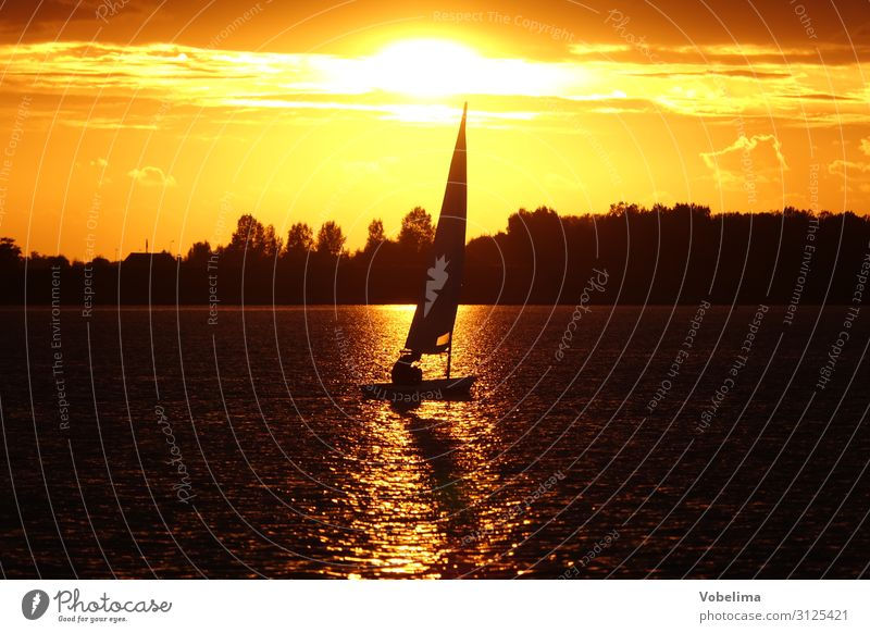 Sailboat on the Veerse sea with evening sun Leisure and hobbies Vacation & Travel Sports Aquatics Sailing Nature Water Ocean Lake Camper Netherlands Europe