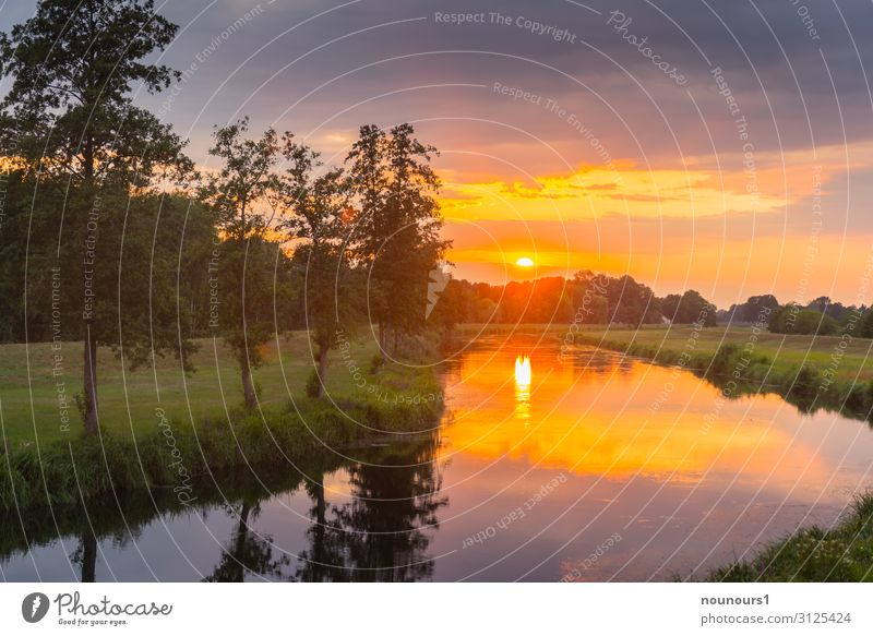 sunset Nature Landscape Plant Water Sky Storm clouds Sunrise Sunset Summer Tree Grass River bank Spree Gray Green Orange Colour photo Exterior shot Evening