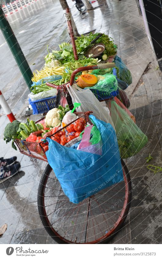 Bicycle sale Food Vegetable Nutrition Vegetarian diet Asian Food Vacation & Travel Trade Cycling Shopping Trolley Select Sell Multicoloured