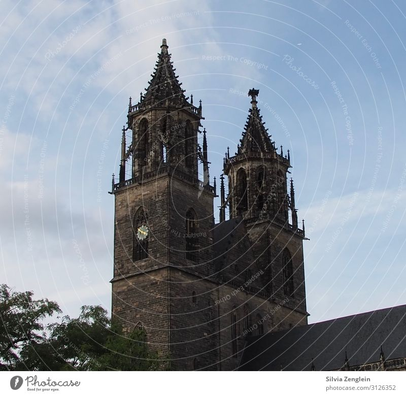 Magdeburg Cathedral Vacation & Travel Tourism Trip Cycling tour Economy Trade Services Media industry Advertising Industry Saxony-Anhalt Town Church Dome