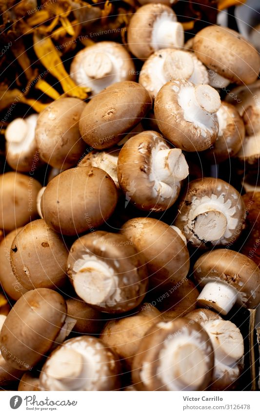 Fresh gastronomy products mushrooms in the market place Food Vegetable Lunch Dinner Organic produce Vegetarian diet Authentic Colour photo Deserted