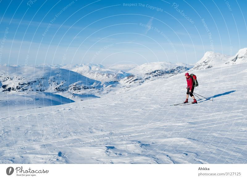 Skiers in nordic glacier landscape Vacation & Travel Far-off places Winter Snow Winter vacation Mountain Winter sports Skiing Young man Youth (Young adults)