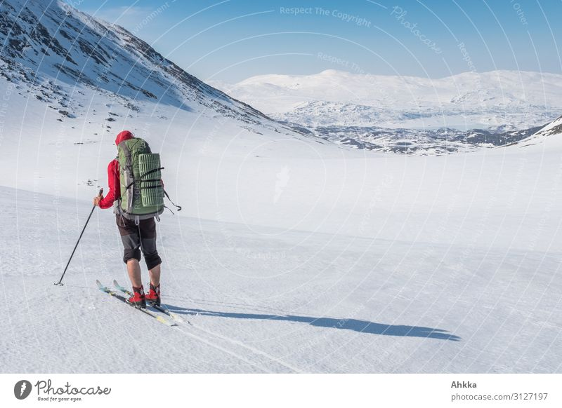 Wanderlust, skiers with perfect conditions Senses Calm Far-off places Winter vacation Winter sports Skiing 1 Human being Nature Beautiful weather Snow Mountain