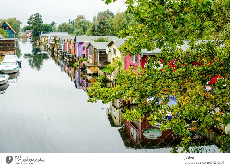 close to the water. Environment Nature Plant Water Autumn Beautiful weather Tree River bank House (Residential Structure) Dream house Manmade structures