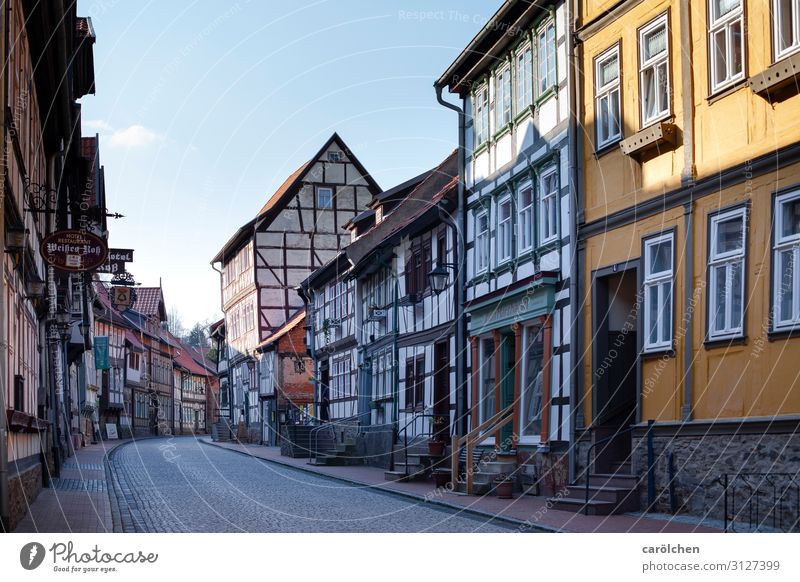 Germany Idyll Historic Old town Village Downtown Peaceful Small Town Old building Harz Half-timbered facade Half-timbered house Village road