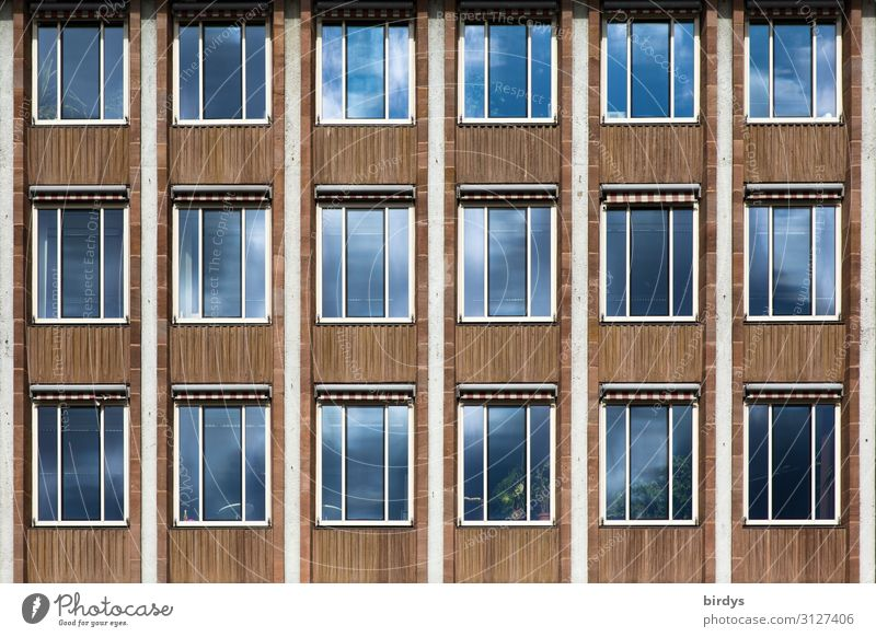 All only facade Town House (Residential Structure) High-rise Building Architecture Facade Window Authentic Blue Brown Gray Design Society Politics and state