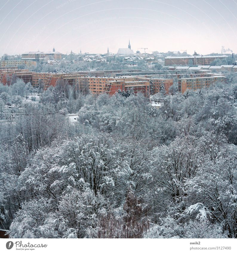 cold city Environment Nature Landscape Sky Winter Beautiful weather Ice Frost Snow Tree Park Forest Bautzen Germany Small Town Downtown Old town Skyline