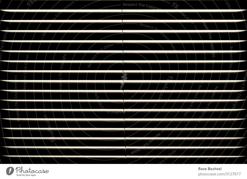 lines Window Dark Arrangement Venetian blinds Contrast darken Shaft of light Closed Black & white photo Interior shot Abstract Pattern Deserted