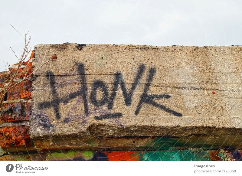 """honk Art Architecture Ruin Manmade structures Stone Sign Characters Graffiti Honk Threat Emotions Bans """"Sign man,honk the horn queer metaphor humorous"""