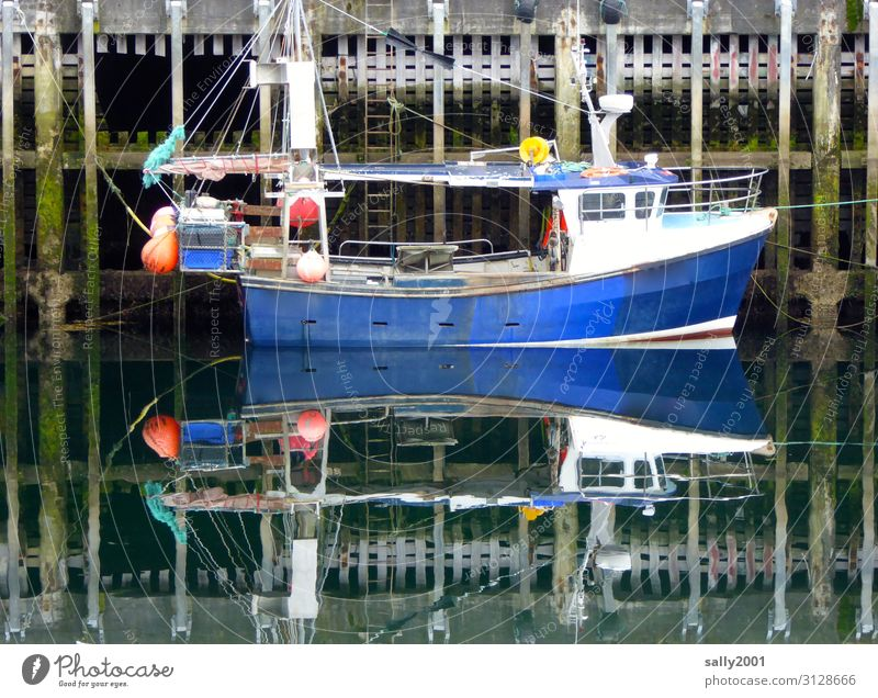...in the safe harbor... Harbour ship boat fish Fishing boat reflection slack windless Calm Low tide Blue Small Water Navigation Reflection Watercraft Fishery