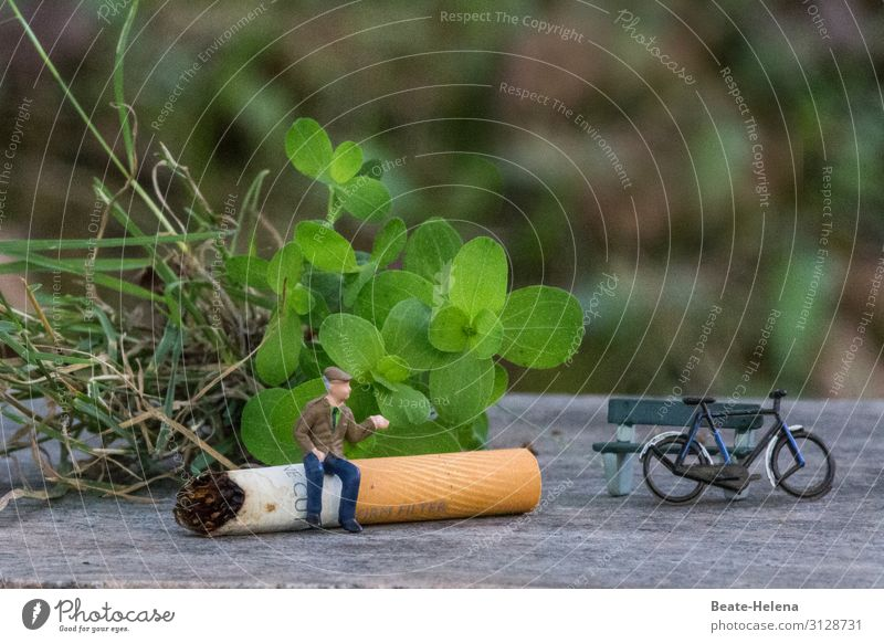 cigarette break Lifestyle Athletic Leisure and hobbies Cycling Trip Cycling tour Sports Fitness Sports Training Masculine Grass Bushes Park bench Lanes & trails