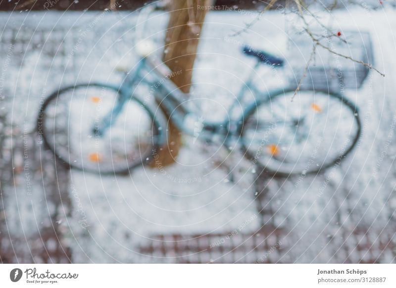 Bicycle standing on a tree in winter bird's eye view Erfurt Germany Winter Background picture Cycling Bird's-eye view Christmas & Advent Ecological Environment