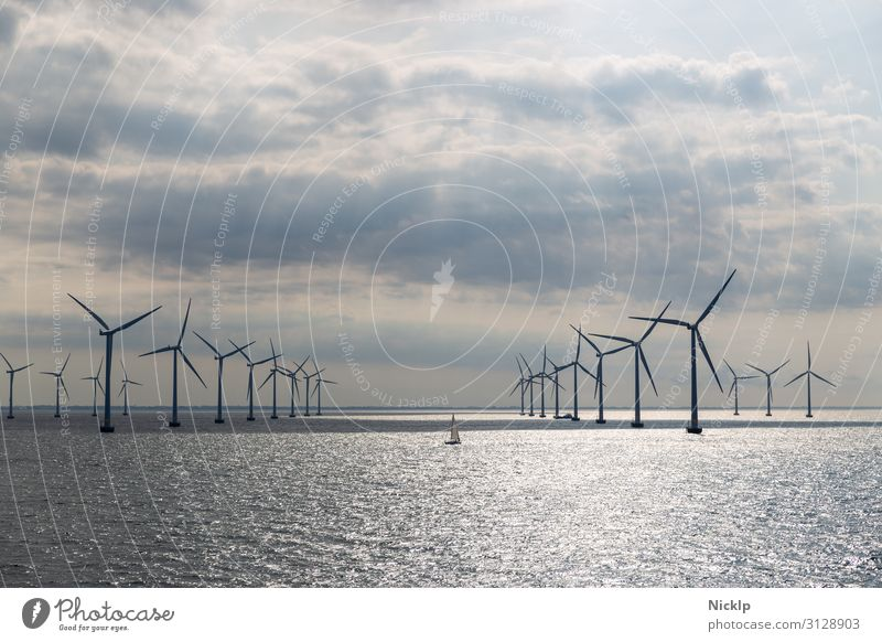 Wind turbines at the Lillgrund offshore wind farm, Sweden/Denmark North Sea Wind energy plant Pinwheel Renewable energy Energy crisis Environment Water