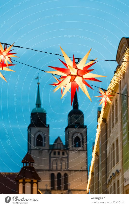 Magdeburg Christmas Market Germany Europe Capital city Downtown Old town Deserted Church Marketplace Tourist Attraction Illuminate Historic Town Blue Red Black