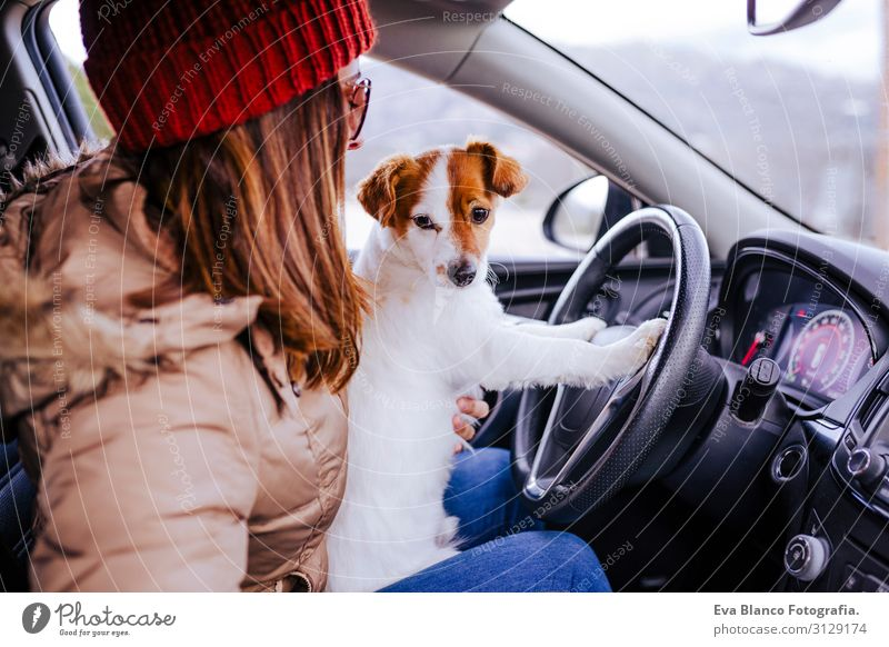 young woman in a car with her cute small jack russell dog Woman Human being Vacation & Travel Dog Youth (Young adults) Young woman Beautiful White Red