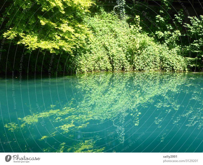 blue rests the lake... Blautopf Baden-Wuerttemberg Swabian Jura Lake Mountain Sunlight Light (Natural Phenomenon) Reflection Day Deserted Exterior shot Gorgeous