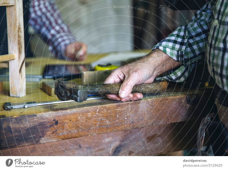 Carpenter's hand holding a hammer Leisure and hobbies Work and employment Profession Business Hammer Human being Woman Adults Man Couple Hand Make Workbench