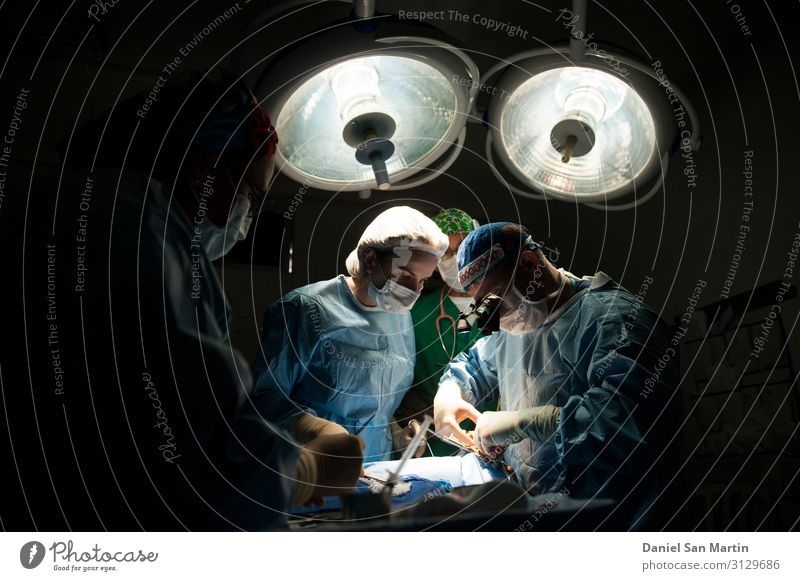 Medical Team Performing Surgical Operation Healthy Health care Medical treatment Medication Lamp Work and employment Doctor Hospital Career Technology
