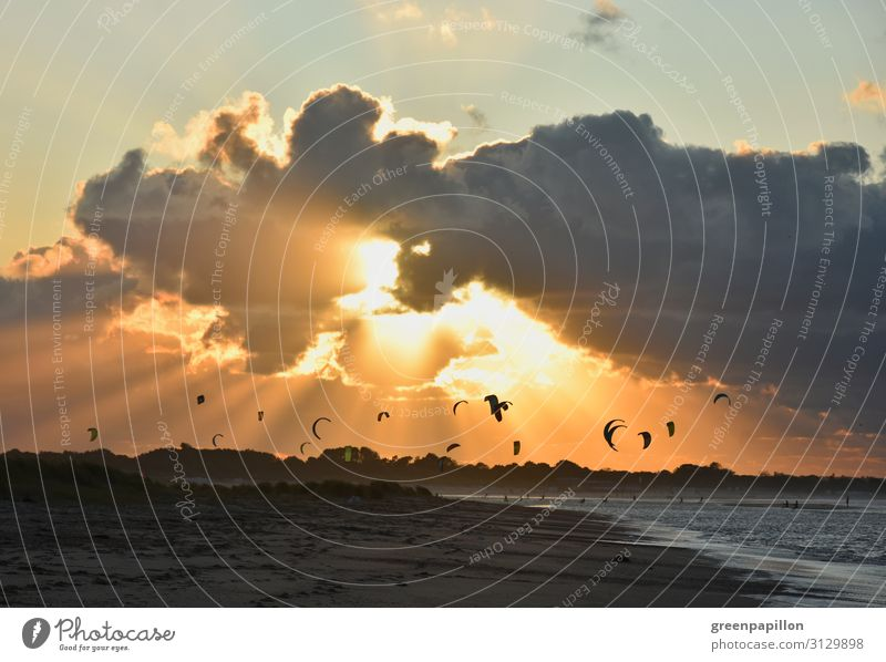 Kitesurfing in the sunset at the North Sea Surfing Kiting Vacation & Travel Tourism Adventure Freedom Summer vacation Waves Nature Landscape Water Sky Clouds