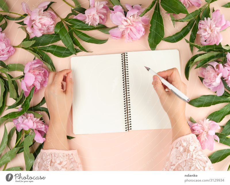 open empty notebook and two female hands Design Decoration Table Birthday Workplace Office Business Woman Adults Hand Book Nature Flower Paper Pen Bouquet Write