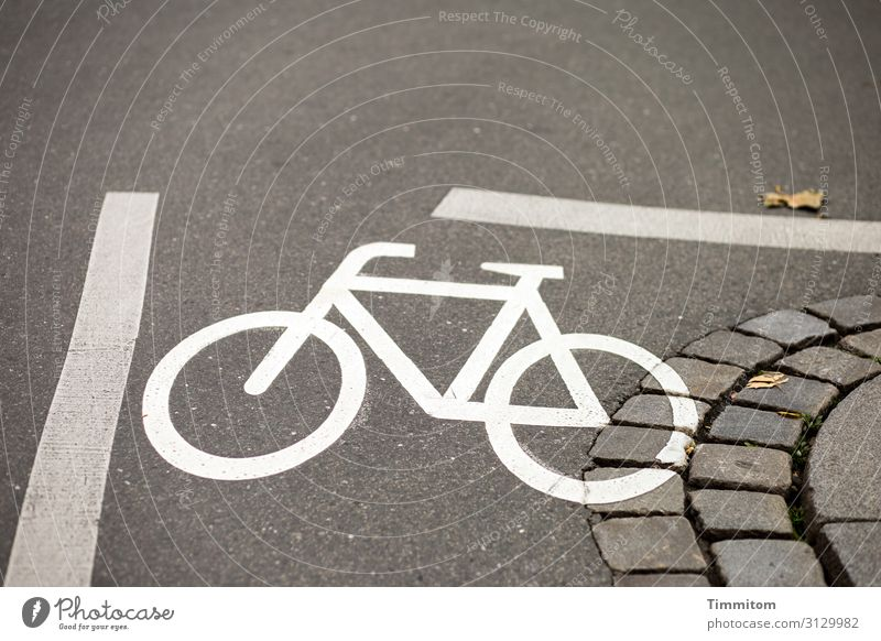 Could be tight... Street Asphalt mark Bicycle Curve paving lines Pictogram Orientation Deserted Colour photo