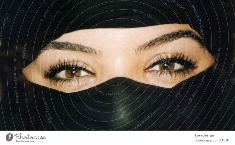 Woman Eyes Eyelash Eyebrow Asia Packaged Arabia Face