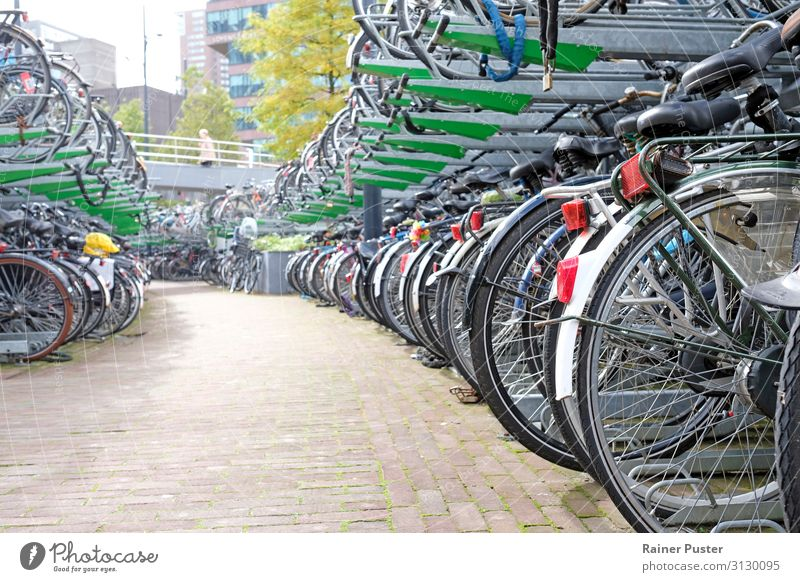Bicycle parking in Rotterdam Town Downtown Parking lot Cycling Street Metal Steel Gray Green Black Leisure and hobbies Colour photo Exterior shot