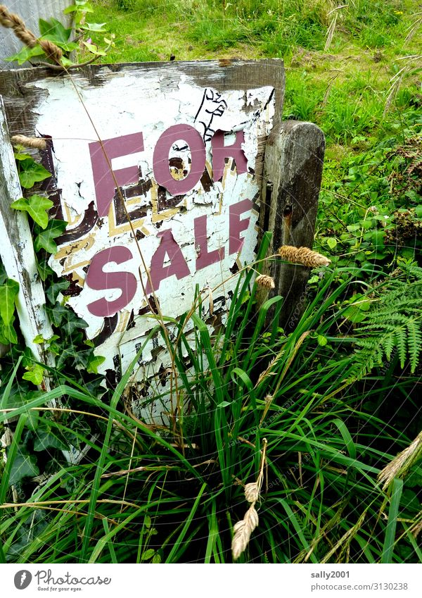 slow-moving Grass Garden Wood Characters Signs and labeling Signage Warning sign Sell Old Original Loneliness Apocalyptic sentiment Decline Transience Derelict
