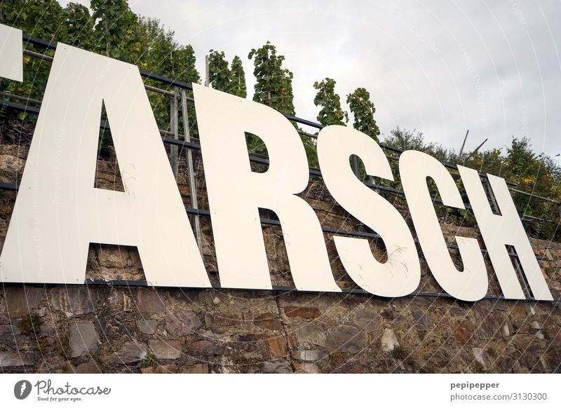 ARSCH Beverage Wine Vacation & Travel Tourism Sky Tree Hill Rock Vineyard Kroev Wall (barrier) Wall (building) Tourist Attraction Landmark Stone Characters