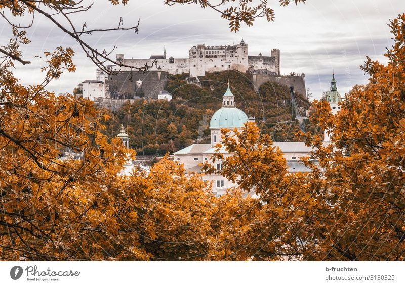 Hohensalzburg Fortress Vacation & Travel Sightseeing City trip Nature Clouds Autumn Plant Bushes Hill Town Church Dome Castle Roof Tourist Attraction Landmark