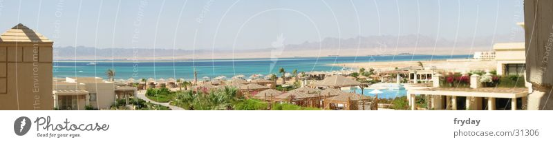 Ocean Beach Vacation & Travel Contentment Large Hotel Panorama (Format) Egypt Red Sea