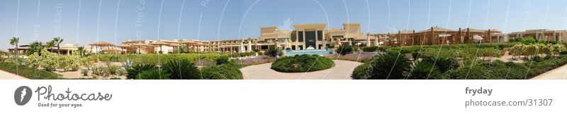 Sky Beach Large Hotel Palm tree Panorama (Format) Philosophy Egypt Moral Africa