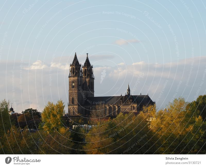 Magdeburg Cathedral Vacation & Travel Tourism Trip City trip Museum Work of art Architecture Town Capital city Church Dome Facade Tourist Attraction Landmark