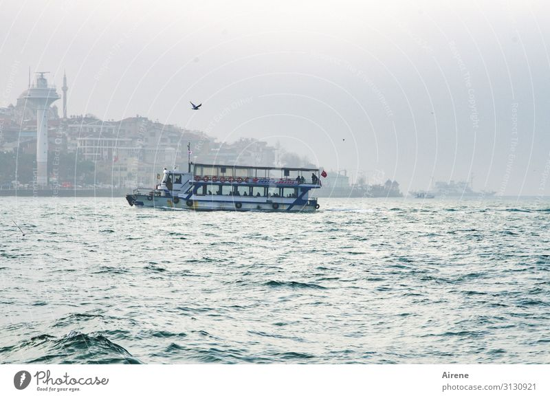 the last boat Tourism Fog Ocean Waterway Istanbul The Bosphorus Ferry Driving Swimming & Bathing Bright Maritime Speed Beautiful White Authentic Wanderlust