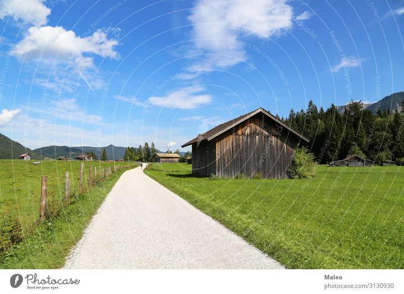 Mountain huts on green meadows in the Alps Austria Bavaria Blue Europe Field Forest Grass Green Hiking Hill Vacation & Travel House (Residential Structure) Hut