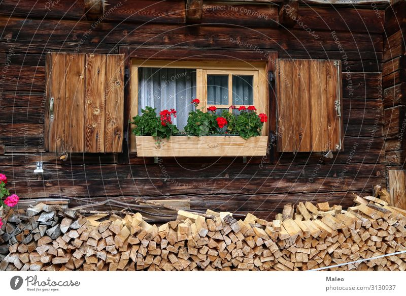 Beautiful geranium on the window of a wooden house Box Architecture Exterior shot Window Flower Geranium Decoration Glass House (Residential Structure)