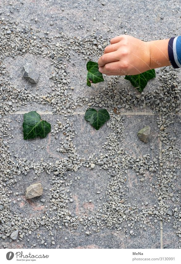 TicTacToe Hand 1 Human being Nature Ivy Rock Pebble Stone Playing Exceptional Authentic Uniqueness Near Natural Joy Enthusiasm Calm Idea Planning