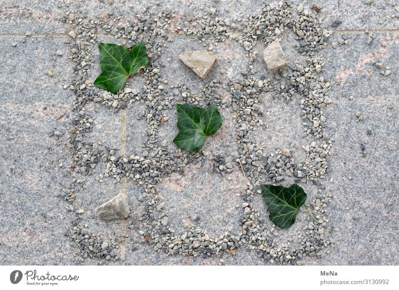 Tic Tac Toe Playing Children's game Nature Ivy Pebble Stone Line Uniqueness Natural Joy Calm Pure Planning Leaf Creativity Colour photo Deserted Day