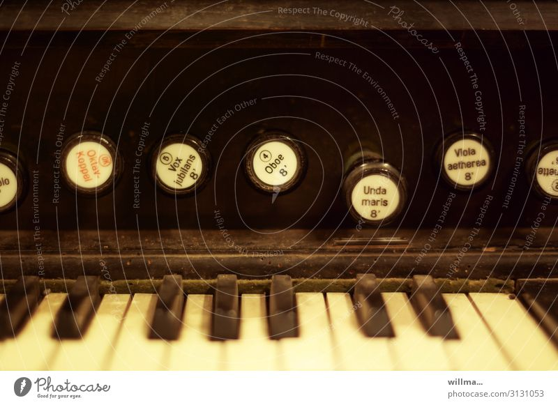 octave-coupled harmonium Organ Keyboard instrument Musical instrument Old Nostalgia dusty octave coupling Vox jubilans Unda maris Worm-eaten Classification