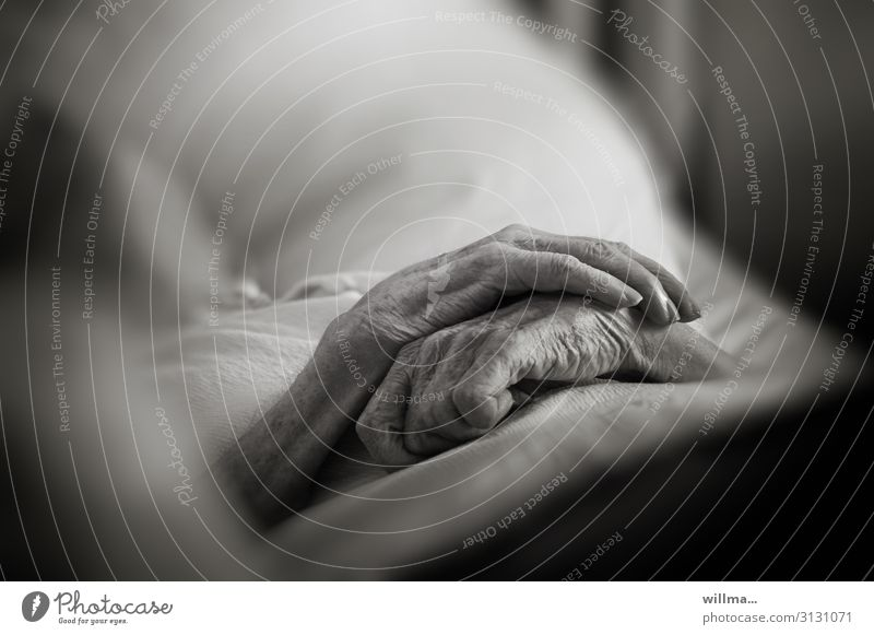 Hands of an old person on the bed, ready to die. Death hands Old Human being Senior citizen Sleep pass away Illness Rest Nursing Care of the elderly Health care