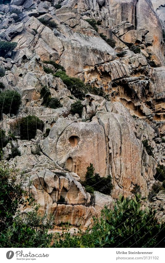 Rock formation II Sardinia rock formation Stone Landscape Erosion Weathered stone fissured cracks fissures Cervice Monolith Monte Pulchiana natural monument