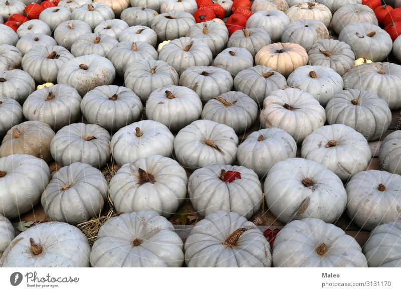 Fresh healthy organic pumpkins at an agricultural market in autumn. Autumn Bazaar Organic produce Organic farming Multicoloured Cooking Farm Farmer Food