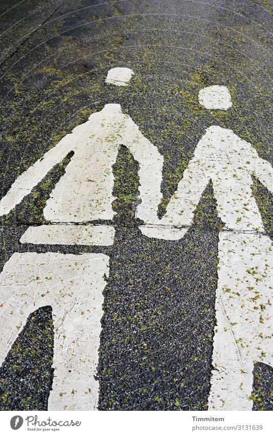 Let`s Work Together Street Sign Going Simple Friendliness Green Black White Emotions Power Acceptance Responsibility Attentive Attachment Asphalt Dye Leaf
