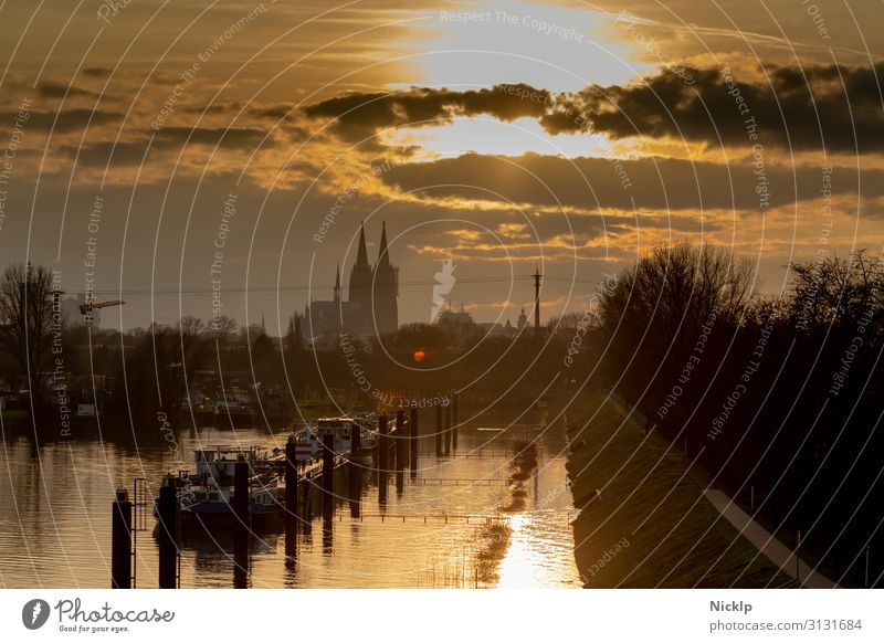 View of Cologne Cathedral from Cologne-Mülheim harbour Sky Clouds Sun Sunrise Sunset Sunlight Autumn Winter Beautiful weather River Rhine North Rhine-Westphalia