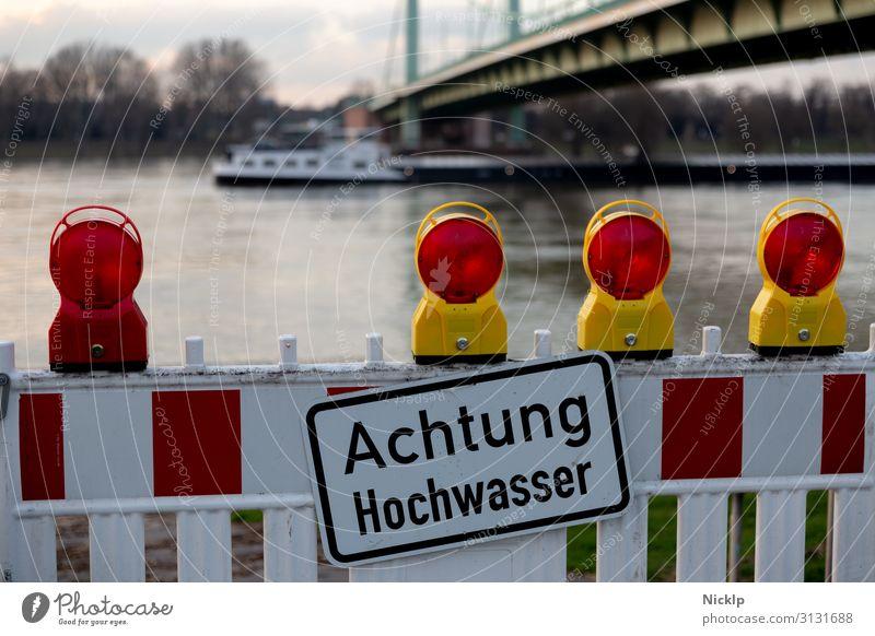Attention Flood - Cologne Mülheimer Bridge, 30 January 2018 Water Sky Autumn Winter Beautiful weather Tree Bushes River Rhine Cologne-Mülheim